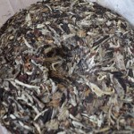Green Boar Organic Tea 023